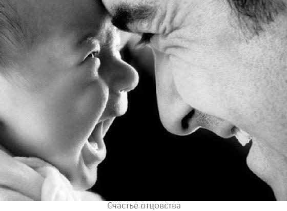 Семья без детей